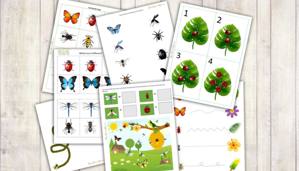Insects Theme Activity Pack-2