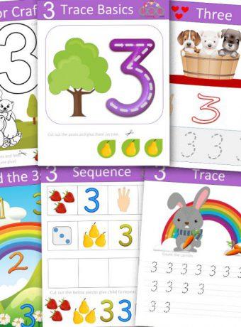 Interactive-Numbers- workbook-2