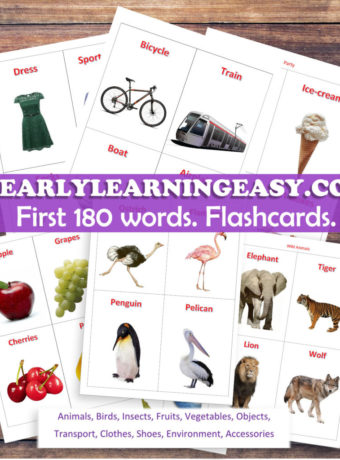 My 1st Flashcards!