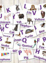 Alphabet Cards 2 2