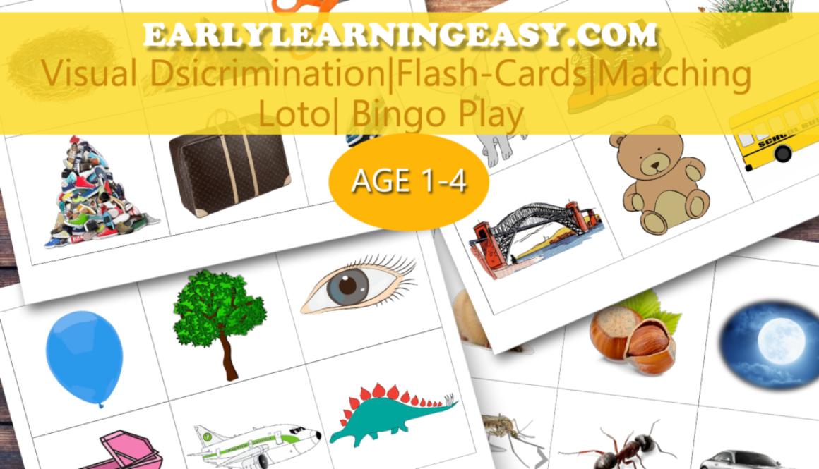 Flash Cards. Matching. Loto/Bingo Play. Visual Discrimination.