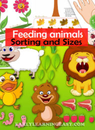 Feed the animals- sorting, sizes