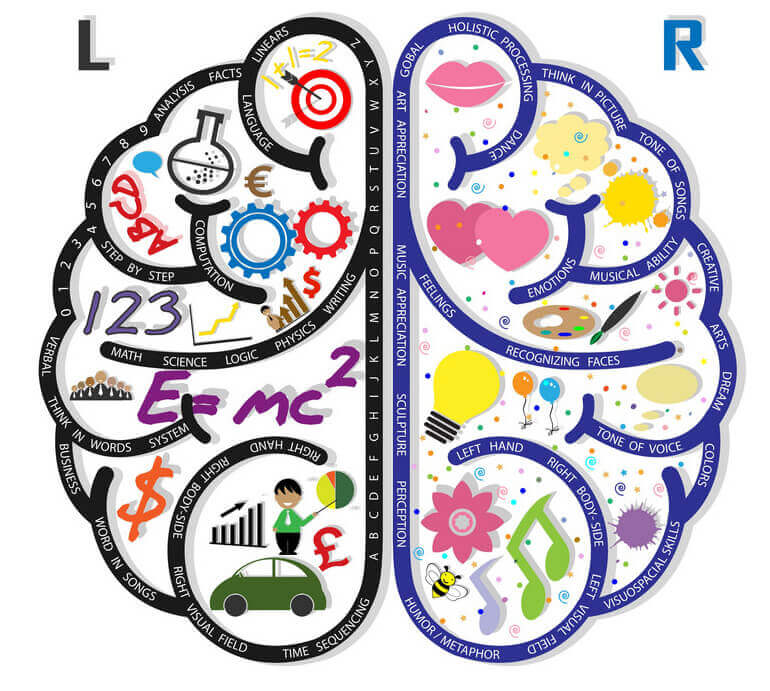 right brain development infographic